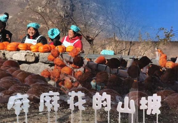 中国扶贫基金会:2019乡村旅游扶贫交流座谈会