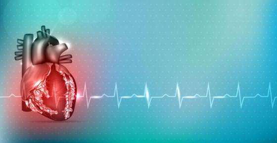 心脏AI软件获FDA批准,相关产品已成监管热点